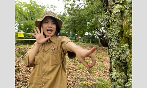 【8/4(水)公演】カブトムシ狩り体験イベント「カブトムシ探検隊」 イベント画像1