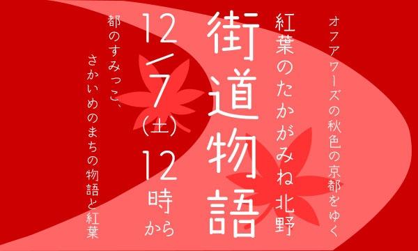 【12/7(土)】紅葉のたかがみね・北野 街道物語 イベント画像1
