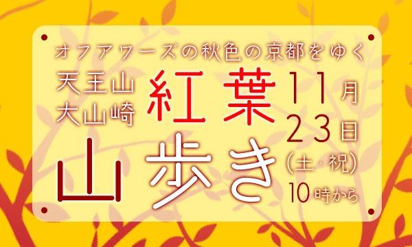【11/23(土・祝)】天王山・大山崎 紅葉山歩き イベント画像1