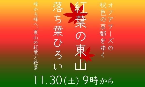 【11/30(土)】紅葉の東山 落ち葉ひろい イベント画像1